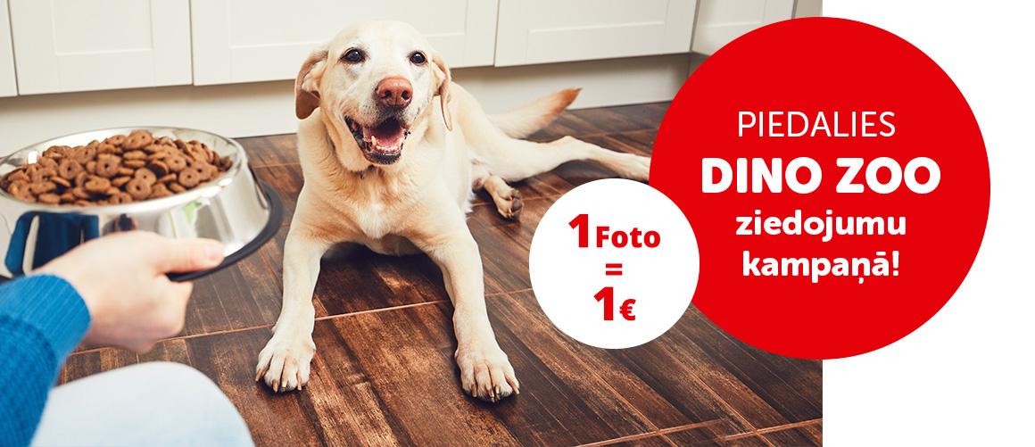 Piedalies DINO ZOO ziedojumu kampaņā!